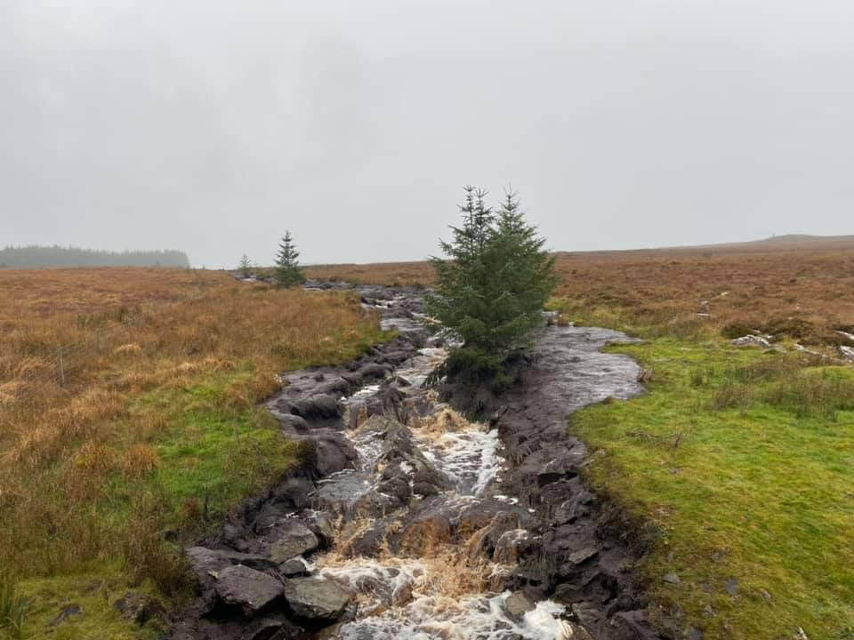 Pringle to raise issues around Donegal bog slippage in the Dáil
