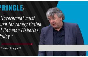 Thomas Pringle TD - Pringle says Government must push for renegotiation of Common Fisheries Policy