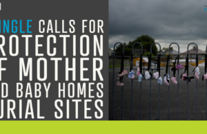 Pringle calls for protection of Mother and Baby Homes burial sites