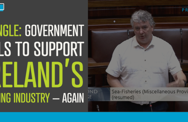 Pringle: Government fails to support Ireland's fishing industry – again